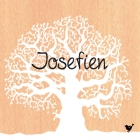 geboortekaartje Winterboom-hout-voor